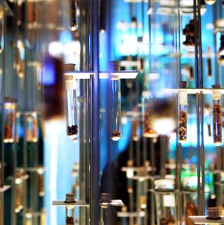 Badass Glass The Commerce Shop Portfolio